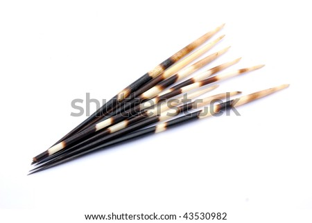South African black and white porcupine quills. Image isolated on white studio background. - stock photo
