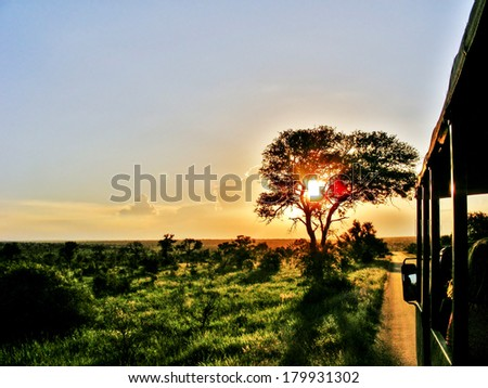 South African Safari sunset on game drive - stock photo