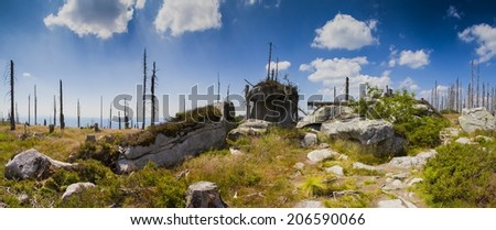 South bohemian landscape with dead forest - stock photo
