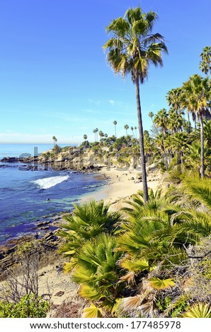 Southern California Beach Scene With Surf Sun And Palm Trees