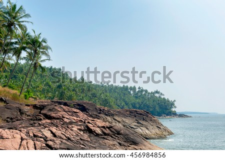 Southern India, beautiful rocky shore surrounded by palm trees