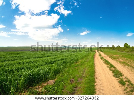 sowings of the winter wheat on Balkanah - stock photo
