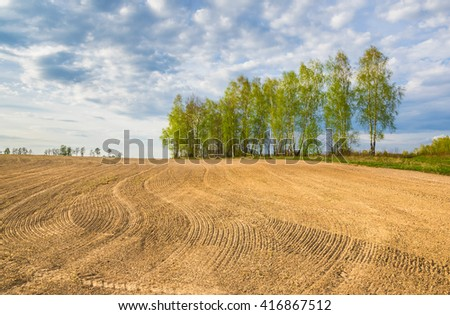 Sown field - stock photo