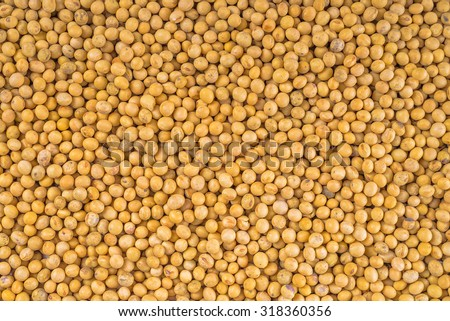 Soy bean as full frame texture, top view from above.