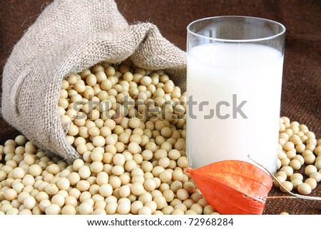 Soy Beans and Soy Milk - stock photo