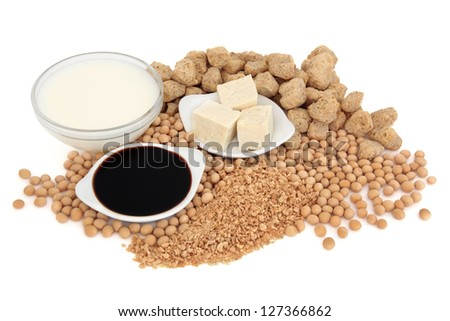 Soy beans, milk, sauce, chunks, tofu and flakes over white background. - stock photo