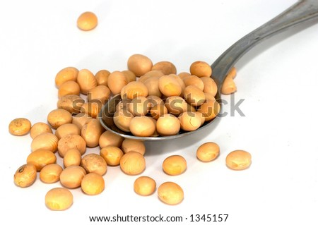 soya beans can be used by itself/whole, soya sprouts, processed as soya milk, tofu, soya sauce or miso - stock photo