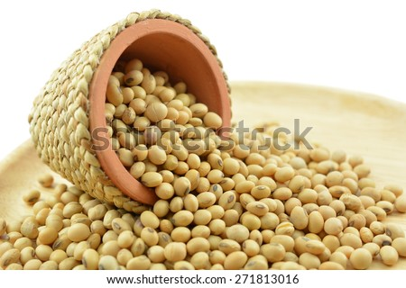 Soybean best for healthy. Used for cooking and healthy menu. Or soy milk is delicious - stock photo