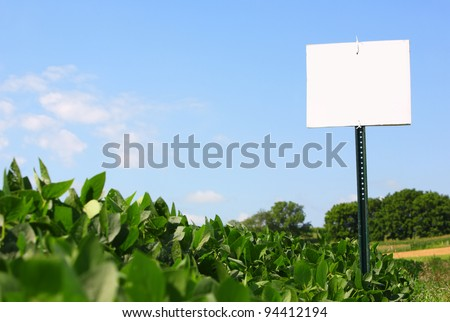 Soybean field with sign - stock photo
