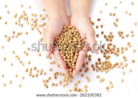 soybean on cupped hands - stock photo