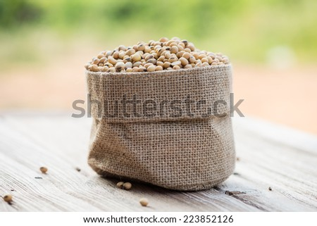 Soybeans in sack - stock photo