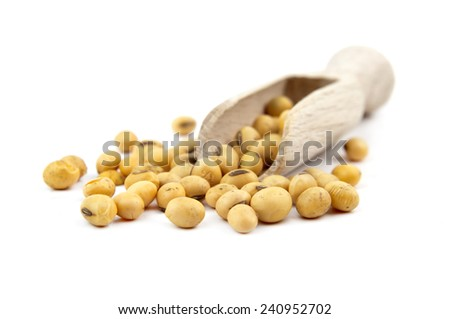 soybeans on wooden spoon isolated on a white background - stock photo