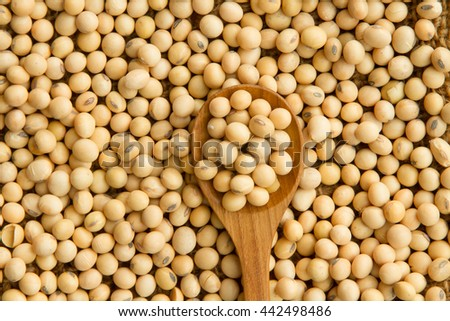 Soybeans on wooden spoon, top view