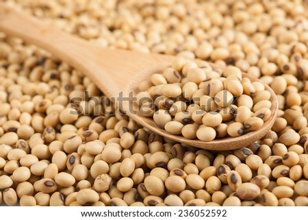 Soybeans with wooden spoon with soybeans as background