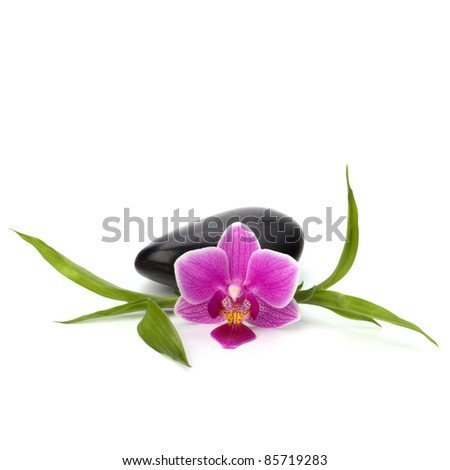 Spa and healthcare concept. Orchid and stones. - stock photo