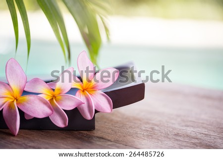 spa and wellness background,  tropical environment with frangipani flower - stock photo