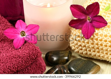Spa and wellness therapy in claret color. Tobacco flowers, pebbles and candle
