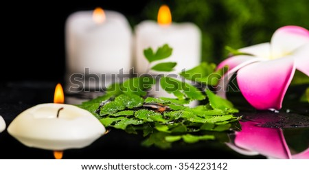 spa background of green branch fern, plumeria flower with drops and candles on zen basalt stones in reflection water, panorama - stock photo