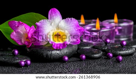 spa background of purple orchid dendrobium, green leaf Calla lily and candles on black zen stones with drops, panorama - stock photo