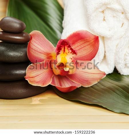 female lingam massage asian flowers massage