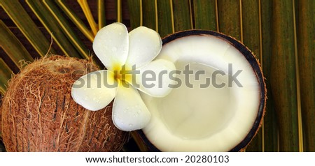 spa beauty exotic tropical flowers coconuts on palm leaf - stock photo