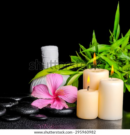 spa composition of pink hibiscus flower, twig bamboo, thai herbal compress balls and candles on zen basalt stones with drops, closeup