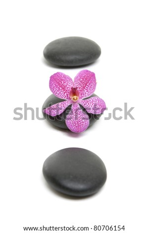 Spa concept.a line Stones and pink orchid - stock photo