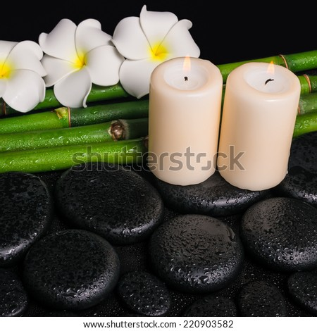 spa concept of zen basalt stones, three white flower frangipani, candles and natural bamboo with dew, closeup  - stock photo