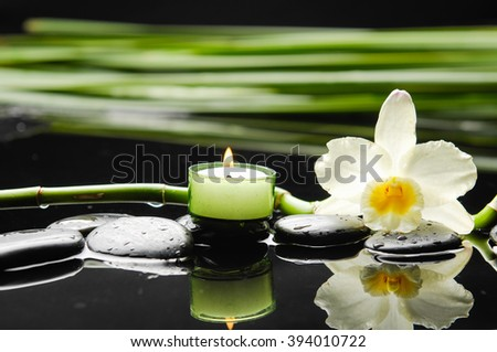 spa concept â??white orchid with stones candle and green plant - stock photo