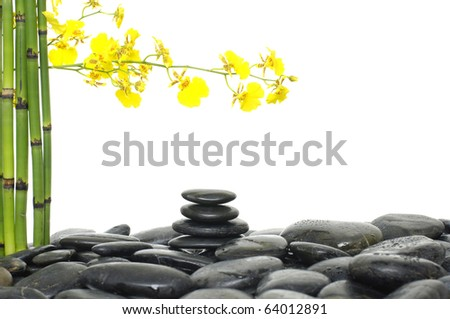 Spa concept with bamboo grove and orchid on pebble - stock photo