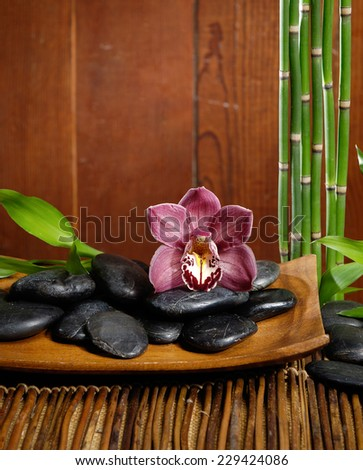 spa concept zen basalt stones with orchid on bowl, bamboo grove  - stock photo