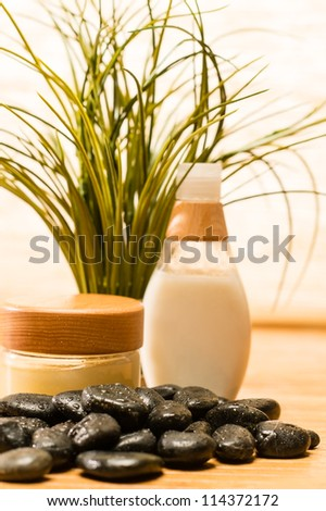 Spa green plant with cosmetic products zen stones - stock photo
