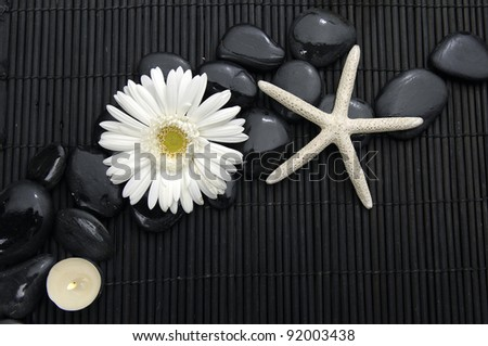Spa life setting(white flower , starfish ,candle, and stones) - stock photo