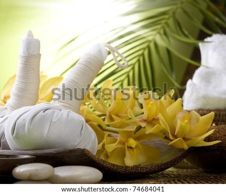 Spa Massage - stock photo