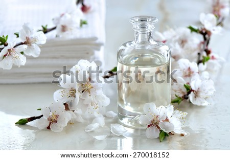 Spa massage oil decorated with spring blooming branches, special formula of essential oils; exclusive and luxury product - stock photo