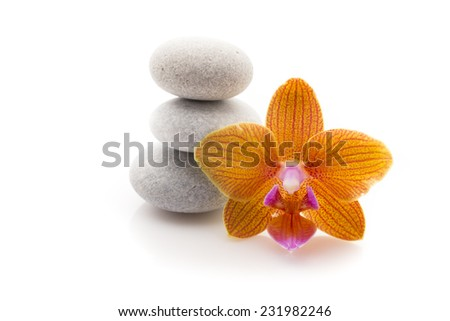Spa massage stones with orchid. Studio photography. - stock photo