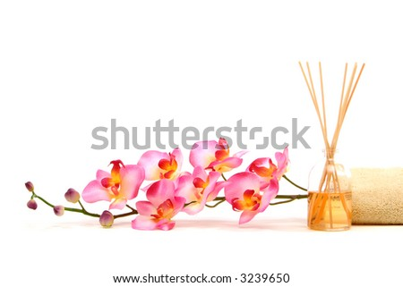 Spa objects on isolated white background - stock photo
