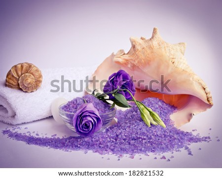 Spa salon design with sea salt and shell. For this photo applied toning in retro style. - stock photo