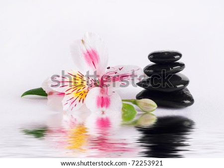 Spa series - stock photo