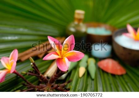 Spa set on wet palm leaf  - stock photo