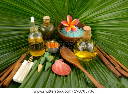 Spa set with frangipani,spa oil , salt in bowl ,candle on wet palm leaf  - stock photo