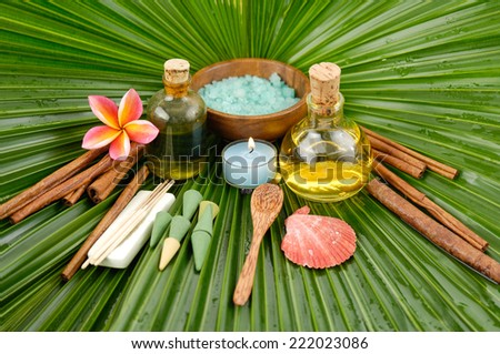 Spa set with frangipani,spa oil , salt in bowl ,candle ,spoon ,shell on wet palm leaf  - stock photo