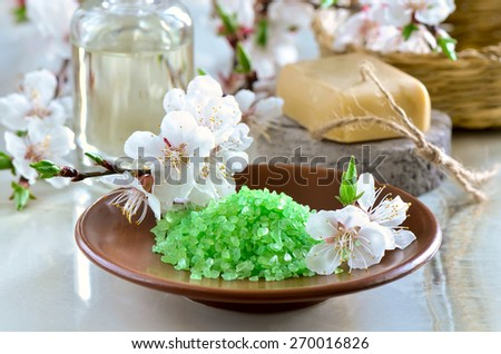 Spa set with green sea salt, handmade soap and massage oil decorated with spring blooming branches - stock photo
