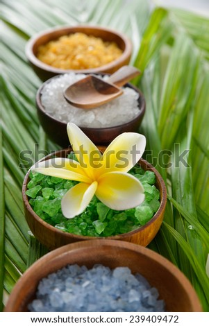 spa set with salt in bowl with spoon, frangipani on green leaf  - stock photo
