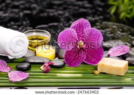 Spa setting and long stem on wet - stock photo