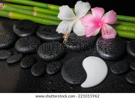 spa setting of white, pink hibiscus flowers, symbol Yin Yang  and natural bamboo on zen basalt stones with drops