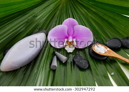 Spa setting with orchid with stones ,salt in spoon on green palm leaf