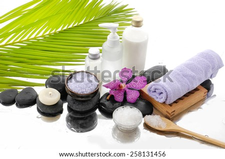 spa setting with palm, towl, salt in bowl - stock photo