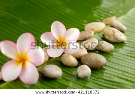 spa setting with pebbles ,candle, orchid and banana leaf - stock photo
