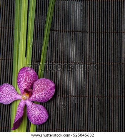 Spa setting with pink orchid ,green plant on mat
